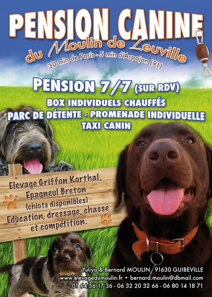 Pension Canine 15x21 07-12